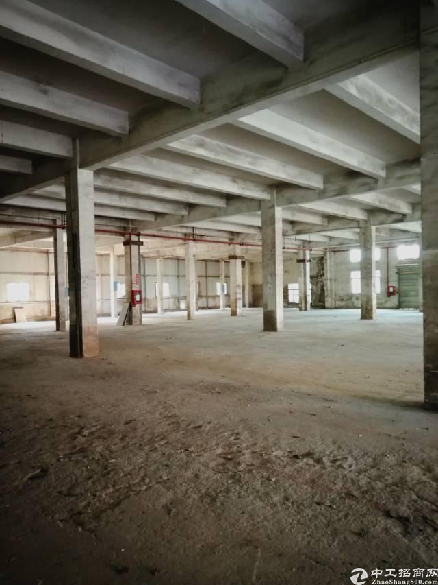 横岗高6米2850平米标准厂房招租