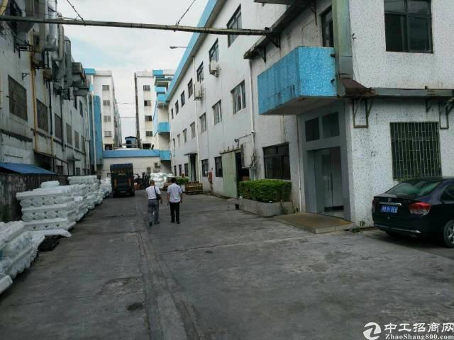 锦厦 实业客一楼标准厂房整层1200平出租