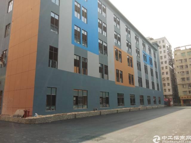 西乡银田工业区4楼1180平方精装修办公贸易厂房招租