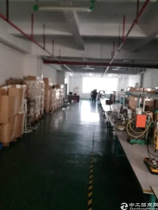 红本厂房南光高速出口李松朗5楼3300平方精装修-图5