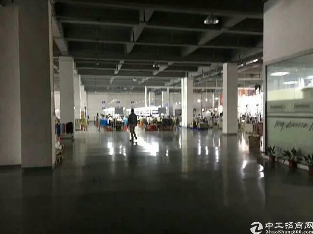 龙华大浪原房东标准厂房整栋15000平