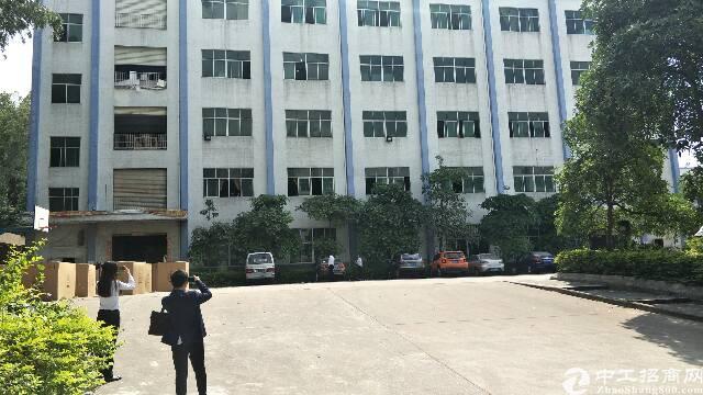 龙岗坪地标准厂房7500平方出租,可分租