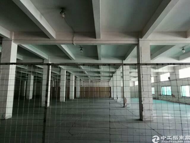 龙华沈海高速出口新出4000平米一楼厂房