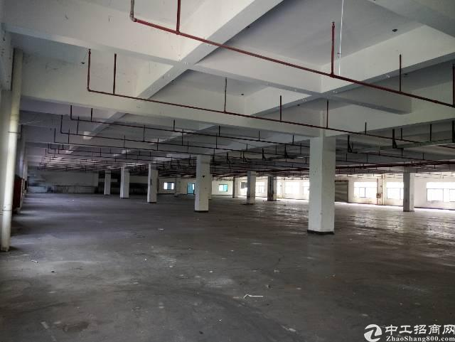 高埗新出工业区标准二楼厂房
