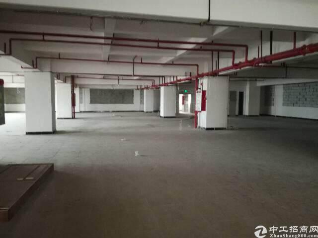 虎门北栅精美200-1300平米写字楼办公室图片2