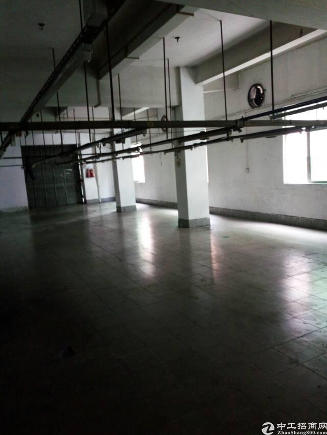 广州新塘新华加油站旁出租厂房1100平方