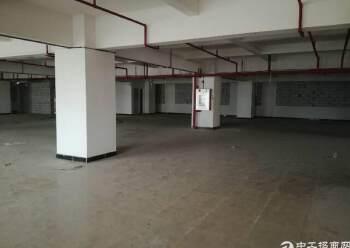 虎门北栅精美200-1300平米写字楼办公室图片6