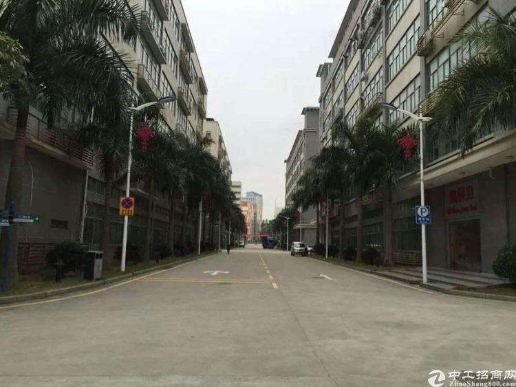 龙华油松,原房东厂房12500平,带红本消防喷淋