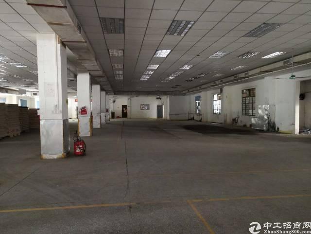 高埗镇大型工业园内厂房招租