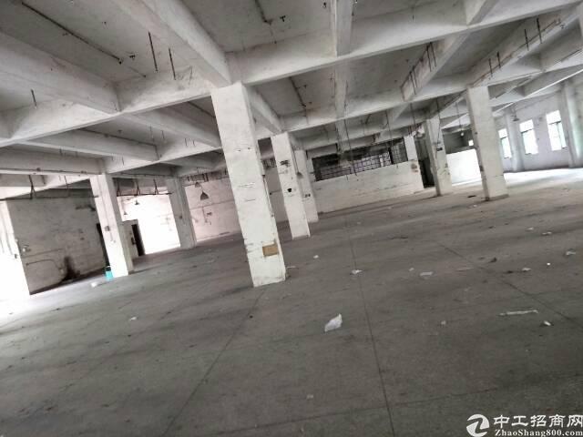 广州市增城区新塘镇