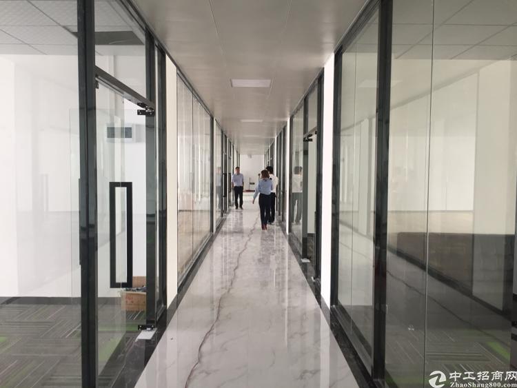 龙华布龙路鹊山路口电商园精装修148平方米起租