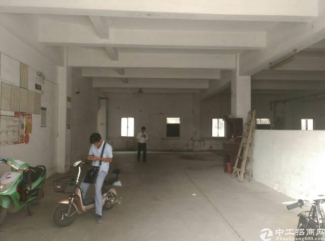 一楼标准厂房1150公明汽车站后面-图3