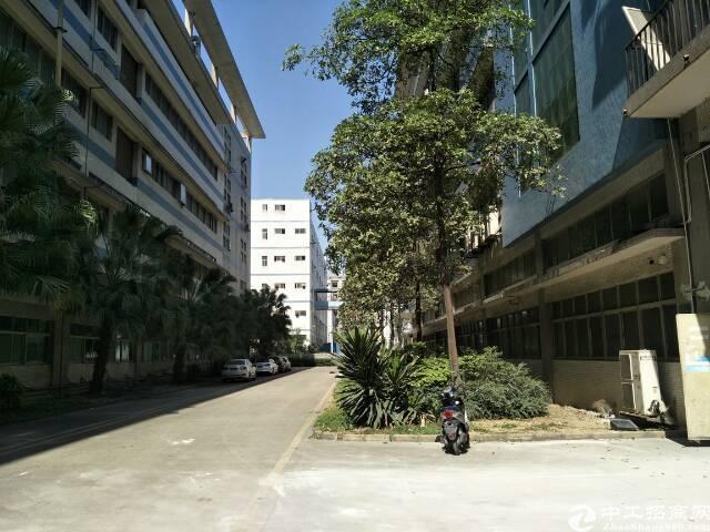福永高速附近原房东厂房楼上1500平米出租-图4