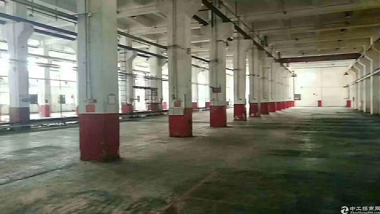塘厦镇石鼓一楼10250平方标准厂房一楼出租(高度8米)