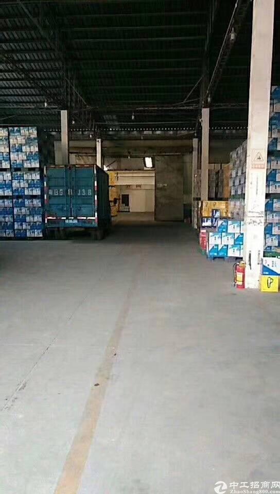龙华清湖地铁口500米新出一楼2200㎡仓库出租精装修办公室