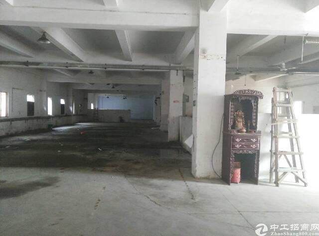 一楼标准厂房1150公明汽车站后面-图2
