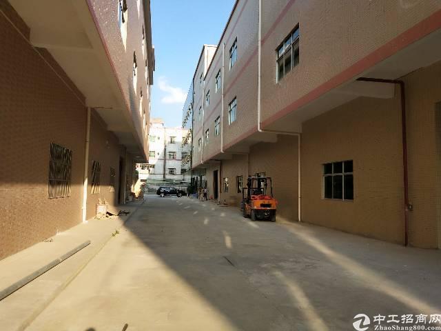 标准厂房出租1-3楼