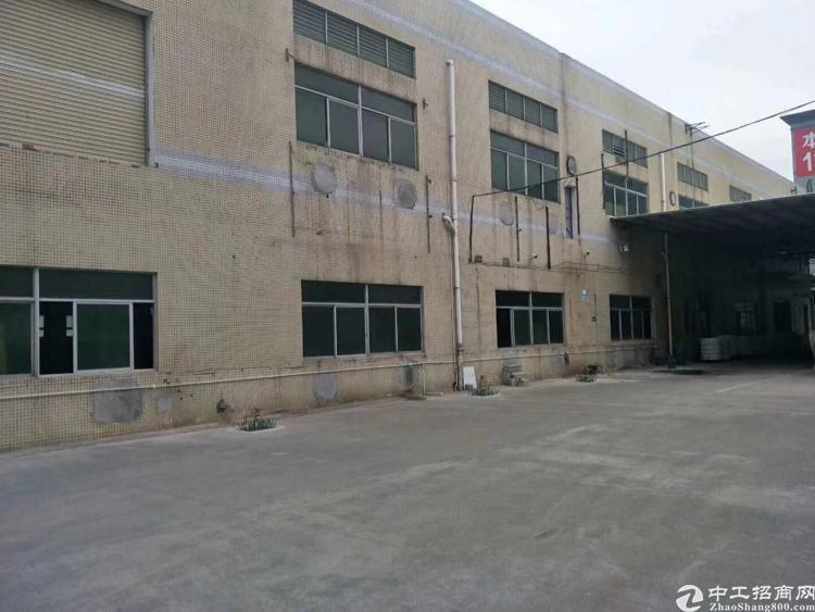 高埗镇独门独院标准一楼厂房