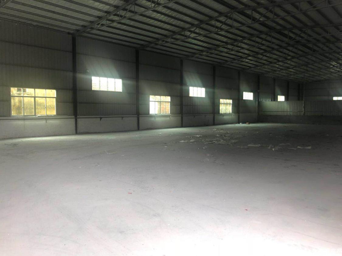 企石镇西安村全新钢结构厂房
