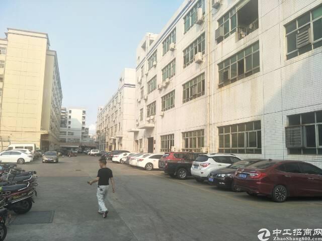 福永原房东带红本厂房30000平米出租可分租