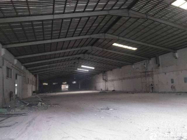 大岭山杨屋新出钢结构厂房3600平方