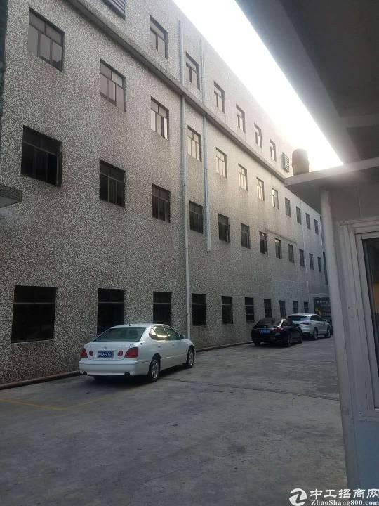 稀缺房源固戍地铁口原房东楼上1250平厂房