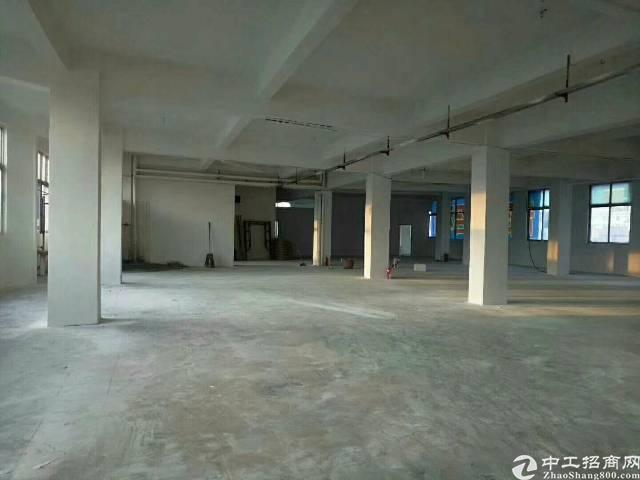 高埗镇全新小独院厂房2700平米