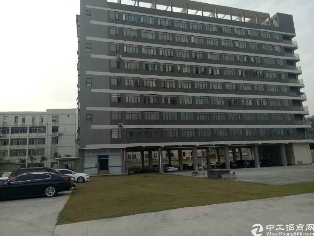 东莞常平镇全新厂房分层出售 50年独立红本