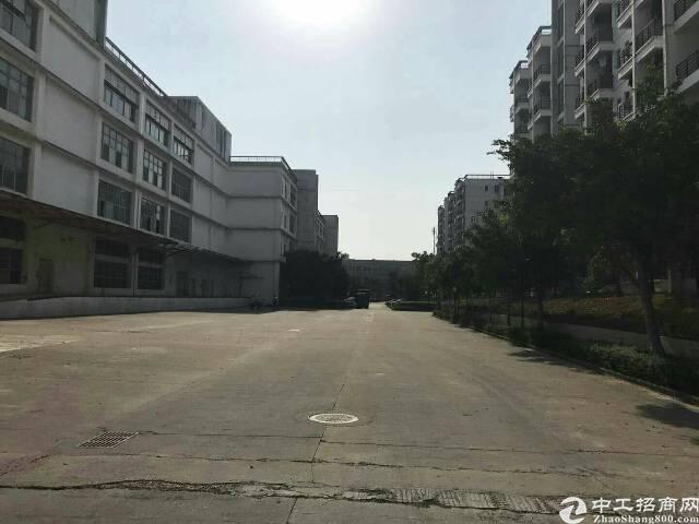 100米卸货平台带四部电梯3万平 坪山 大工业区