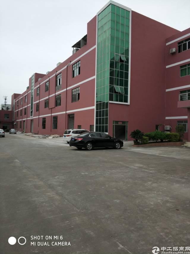 高埗镇大型工业园内标准厂房出租