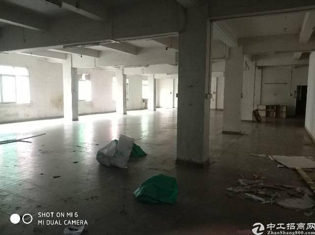 石碣新出工业区漂亮单一层厂房450平方滴水10米