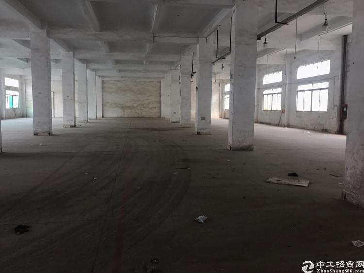 龙岗嶂背一楼招租165开始分整体面积2000平