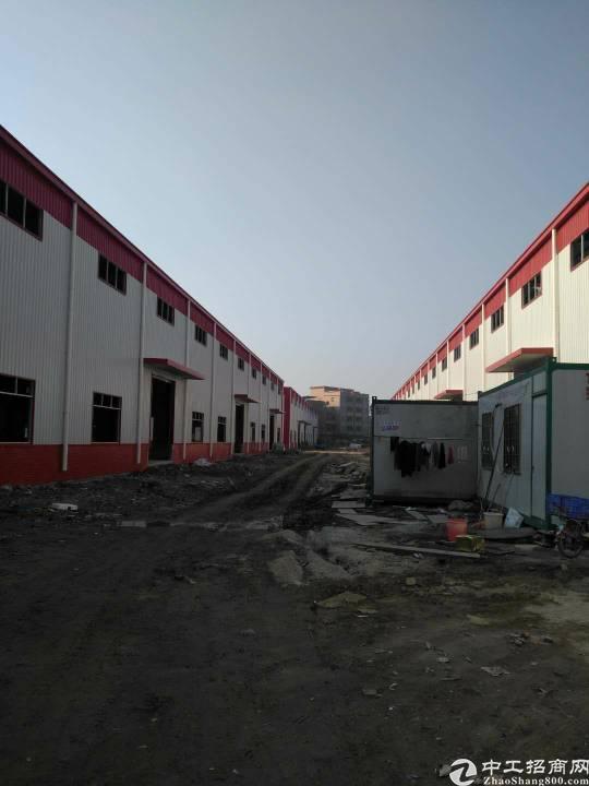 新塘工业区新出单一层钢结构厂房