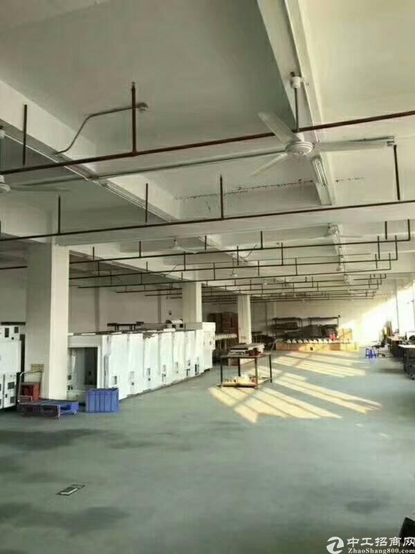 马田靠近松岗一楼1300平方厂房高5.2米带装修