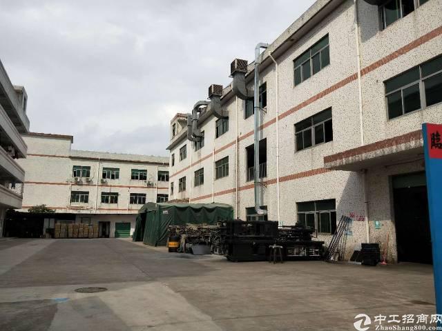 坑梓秀新楼上地坪漆精装修厂房500平带电梯