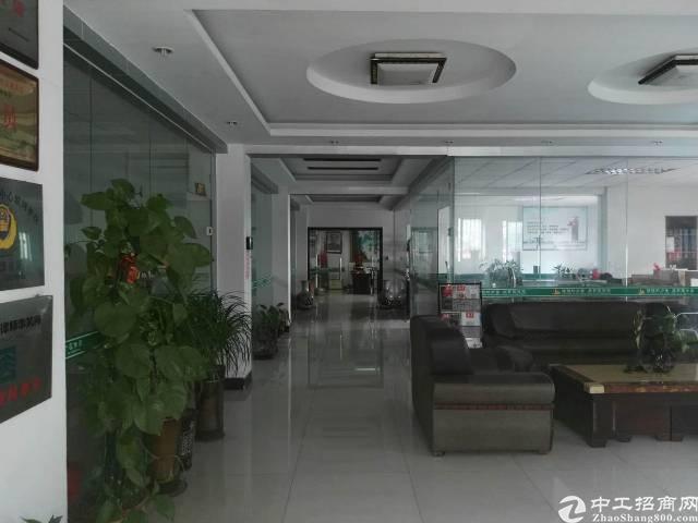 万江总站附近3-4层现成豪华装修写字楼可分租一层