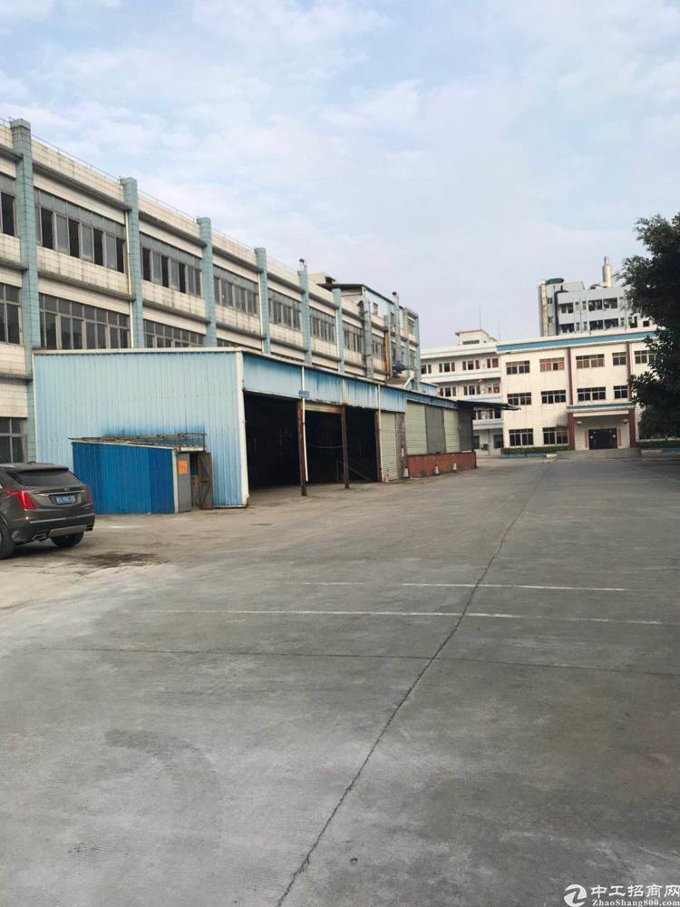 大岭山新出厂房炉石小学生图片