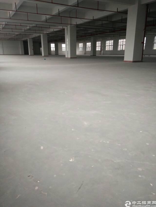 长安镇107国道边新厂房出租