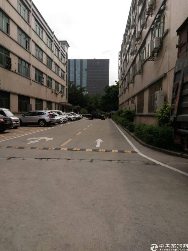 福永新出原房东1-4层8000平米厂房招租(可大小分租)-图4