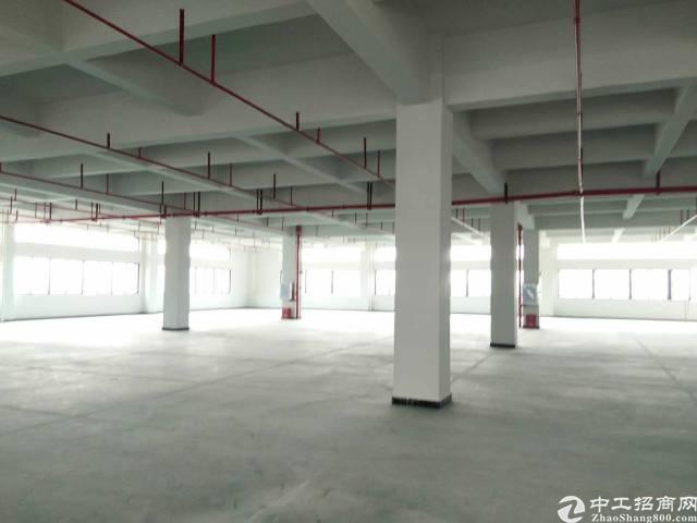 高埗镇独院标准厂房13000平米