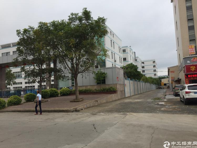 凤岗镇24000平方国有厂房出售