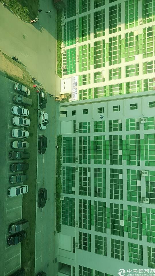 松岗燕川新出楼上厂房1680平方带装修有红本带喷淋原房东低价