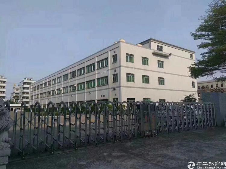 松山湖高新产业园厂房招租