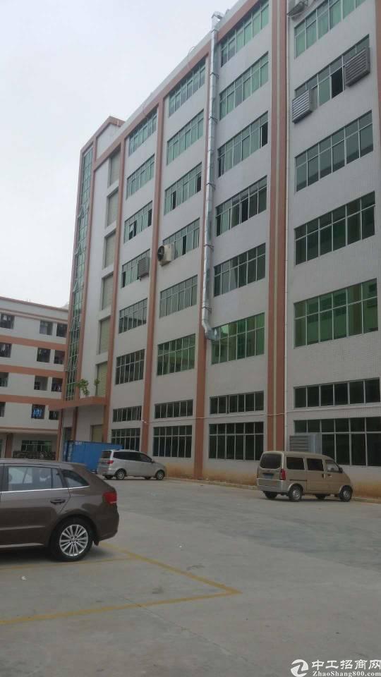 塘厦科宛城原房东一楼1200平方带牛角厂房出租