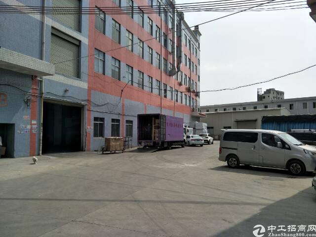 黄江靠公明新出标准厂房一楼1200平方招租,高度6.5米