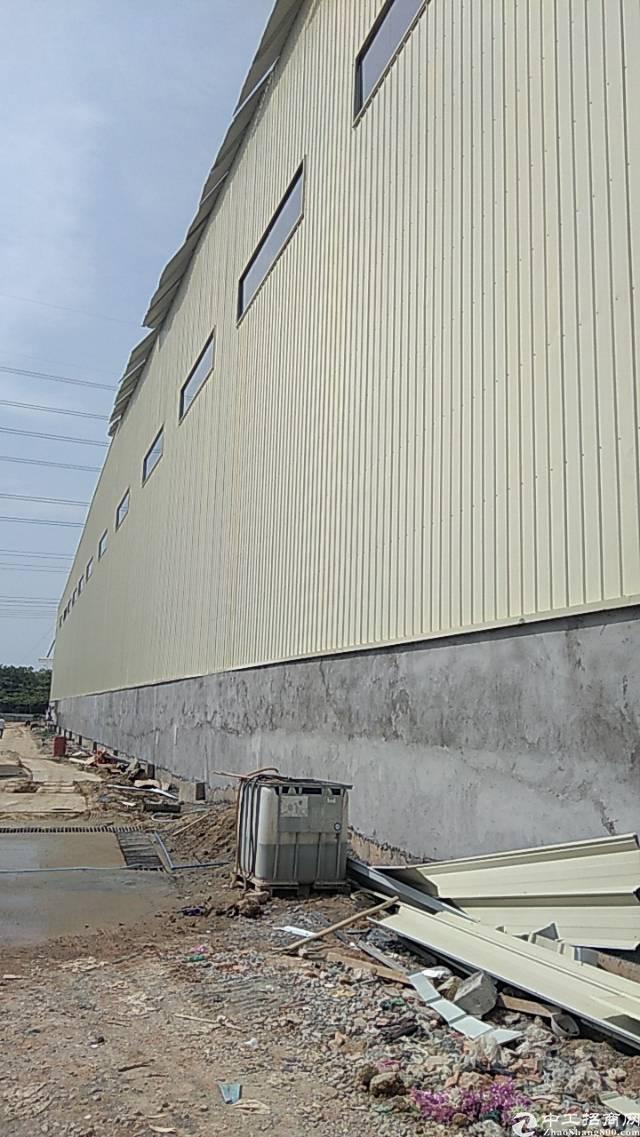 广州新塘12米高单一层钢构出租