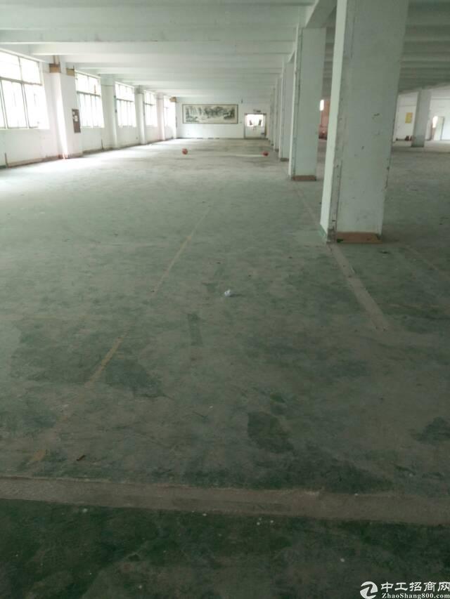 福永新出原房东1-4层8000平米厂房招租(可大小分租)-图3
