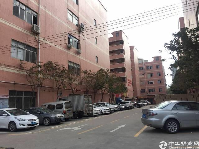 龙岗南联原房东工业园800-5000平红本厂房出租