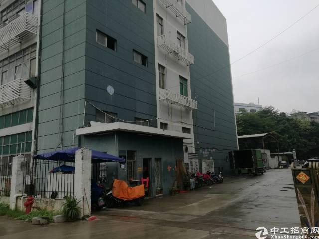 1100平方1楼厂房出租-图4