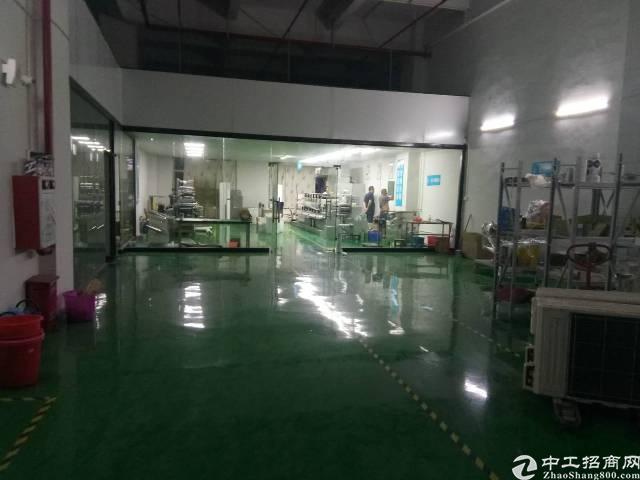 全新厂房1楼办公室装修好,全新地坪漆500平